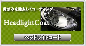 ヘッドライトコート