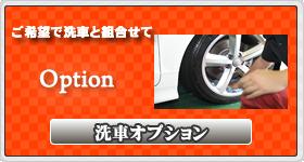 洗車オプション